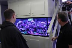300 Gallon Deep Dimension SPS Reef