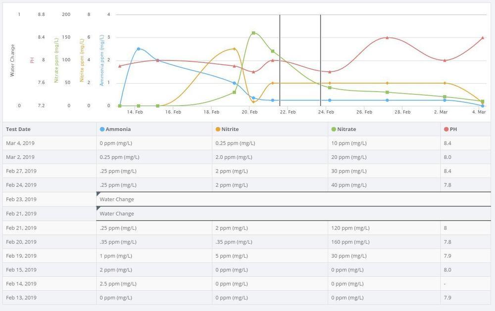 Anallytics4.JPG