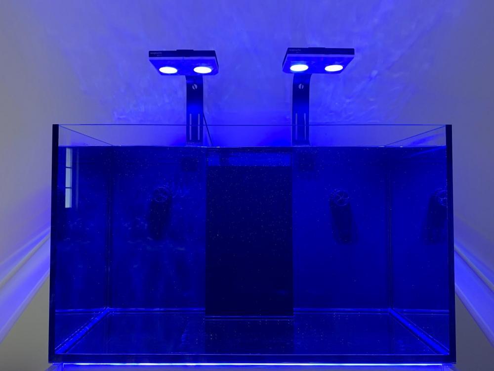 water_test.thumb.jpg.51e5de163206c4ea2725f1943b125853.jpg